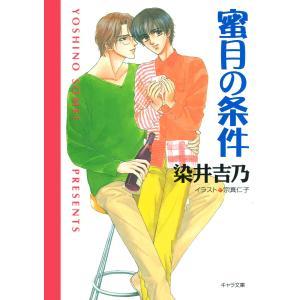 蜜月の条件 嘘つきの恋(2) 電子書籍版 / 染井吉乃|ebookjapan
