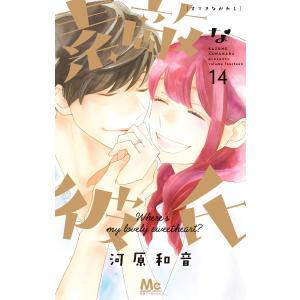 素敵な彼氏 (14) 電子書籍版 / 河原和音|ebookjapan