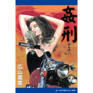 姦刑 電子書籍版 / 著:広山義慶 ebookjapan