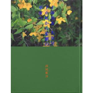 十市皇女 大友皇子正妃から悲劇の巫女へ 電子書籍版 / 著:高尾藍月 ebookjapan