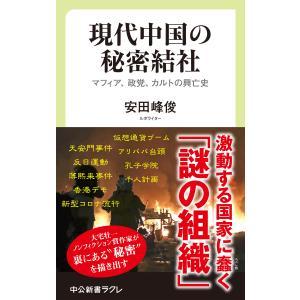 現代中国の秘密結社 マフィア、政党、カルトの興亡史 電子書籍版 / 安田峰俊 著 ebookjapan
