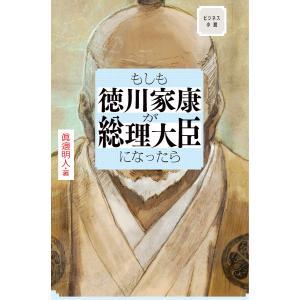 ビジネス小説 もしも徳川家康が総理大臣になったら 電子書籍版 / 著:眞邊明人|ebookjapan