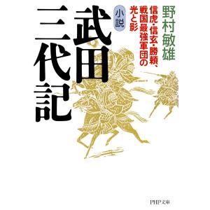 小説 武田三代記 電子書籍版 / 野村敏雄(著)|ebookjapan