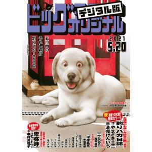 ビッグコミックオリジナル 2021年10号(2021年5月6日発売) 電子書籍版|ebookjapan