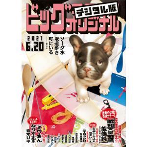 ビッグコミックオリジナル 2021年12号(2021年6月5日発売) 電子書籍版 ebookjapan