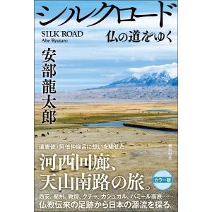 【初回50%OFFクーポン】シルクロード 仏の道をゆく 電子書籍版 / 安部龍太郎