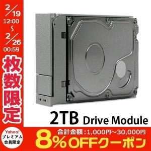 Promise プロミス テクノロジー Pegasus 2TB Drive Module HA019LL/A F40000004100000 ネコポス不可|ec-kitcut