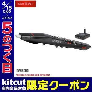AKAI アカイプロフェッショナル EWI5000 WIRELESS ELECTRONIC WIND INSTRUMENT ウインド・シンセサイザー AP-EWI-015 ネコポス不可|ec-kitcut