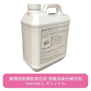 万能洗剤 イオン洗浄水 クライアルウォーター(Crial Water) 4リットル|ececo