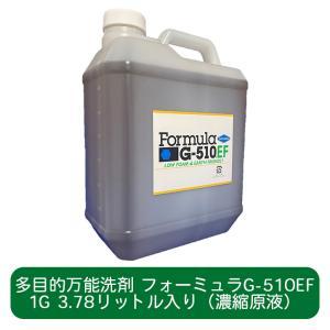 人と地球環境に優しい多目的洗剤 フォーミュラG-510EF 1ガロン(3.78L)ボトル(濃縮原液入り)|ececo