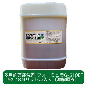 人と地球環境に優しい多目的洗剤 フォーミュラG-510EF 5ガロン(18.9L)ボトル(濃縮原液入り)|ececo