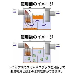 グリーストラップ管理用バクテリア製剤 ROEBIC L-75 4リットル|ececo|02