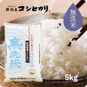 無洗米 新潟産コシヒカリ 5kg 平成29年産 送料無料 (...