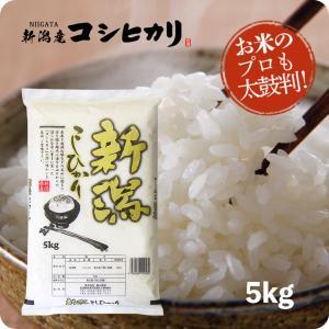 米 お米5kg _新潟産こしひかり5kg - コ...の商品画像
