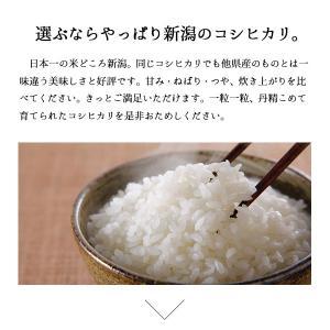 新米 5kg コシヒカリ お米 新潟県産こしひ...の詳細画像4
