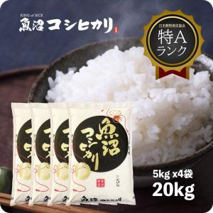 米 お米 20kg 白米 魚沼産コシヒカリ 20kg (5k...