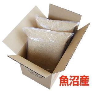 玄米 魚沼産コシヒカリ 真空パック 10kg×2 本州〜四国送料無料|echigo-komesho