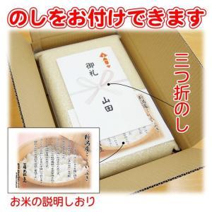 29年 新潟産 こしいぶき 真空パック 5kg|echigo-komesho|02