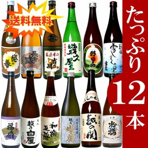 日本酒 4合瓶飲み比べセット720ml×12本 ギフト 厳選された新潟の日本酒12本を飲み比べ! た...