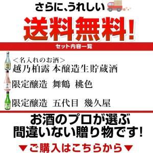 遅れてごめんね 父の日 プレゼント 日本酒 名入れ 飲み比べセット(鳥改)父の日ギフト ミニボトル300ml×3本 60代 70代 80代|echigo|11