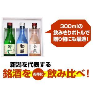 遅れてごめんね 父の日 プレゼント 日本酒 名入れ 飲み比べセット(鳥改)父の日ギフト ミニボトル300ml×3本 60代 70代 80代|echigo|10