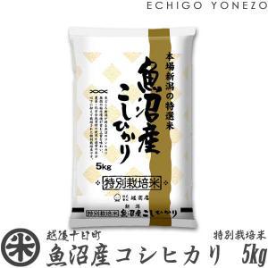 新米 28 魚沼産コシヒカリ 料特別栽培米 特A 5kg (...