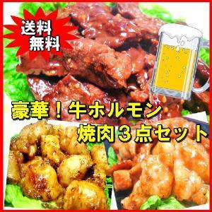 送料無料 豪華 牛ホルモン焼肉3点セット バーベキュー BBQ echizennohorumonya