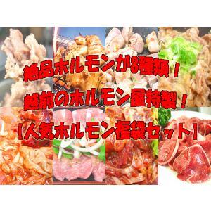 グルメなホルモン8種盛り人気ホルモン福袋セット 送料無料 父の日 BBQ 肉の日 焼肉 ホルモン お歳暮 B級グルメ|echizennohorumonya