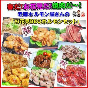 【送料無料】焼肉が盛り上がるッ!お花見用ホルモン焼肉福袋!