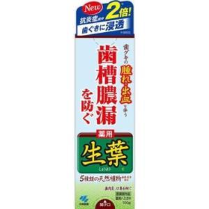 小林製薬 薬用はみがき 生葉 100g|ecjoyecj27