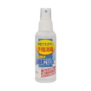 健栄製薬 スプレー式 消毒用エタノールA 100ml|ecjoyecj27