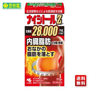 【第2類医薬品】 小林製薬 ナイシトールZ 315錠