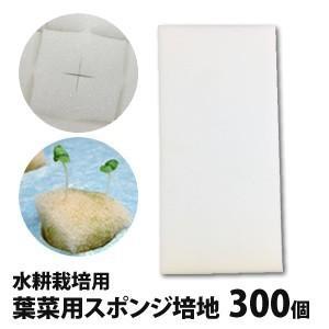 葉菜用培地(300個)・水耕栽培には必需品の培地(スポンジ)