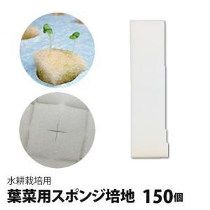 葉菜用培地(150個)・水耕栽培には必需品の培地(スポンジ)