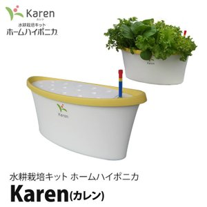 水耕栽培キット ホームハイポニカKaren (カレン) イエロー