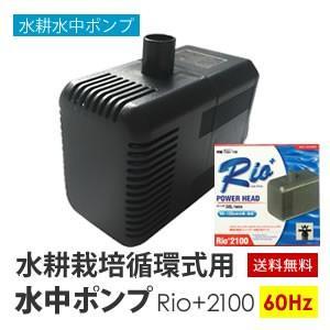 水中ポンプ 水耕栽培 循環式用 Rio+2100 60Hz|eco-guerrilla