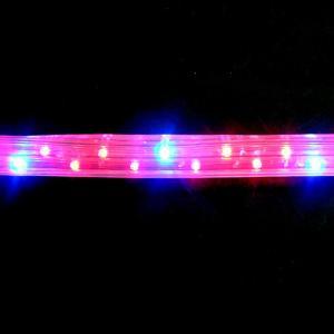 植物育成 LED ロープライト 赤・青 防滴 切売り 直送|eco-guerrilla