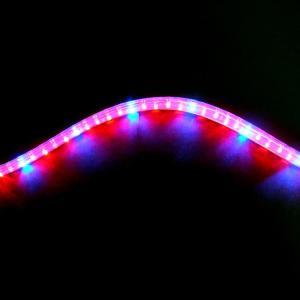 植物育成 LED ロープライト 赤・青 防滴 切売り 直送|eco-guerrilla|03