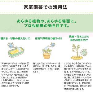 植物活力素 メネデール 200mLの詳細画像4