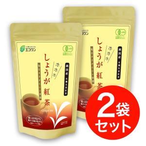 エコワン 有機生姜紅茶 ホホホしょうが紅茶 ティーバッグ 24包入×2袋(48杯分) 茶葉もしょうがも国産有機|eco-one
