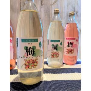 天神うめ〜えドリンク (梅ジュース プレーン(白))|eco-shop-motegi