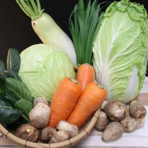 地元産野菜  徳用セット ※別途送料800円かかります、クール便でお届け|eco-shop-motegi