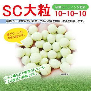 【送料無料】SC大粒(硫黄コーティング肥料) 10平米用|eco-square