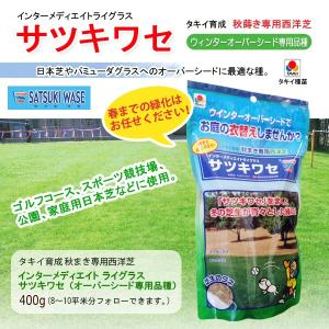 【送料無料】サツキワセ(オーバーシード専用品種)(400g)|eco-square