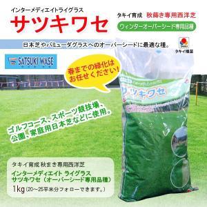 【送料無料】サツキワセ(オーバーシード専用品種)(1kg)|eco-square