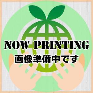 CT202334 Xerox用 リサイクルトナー|eco4you