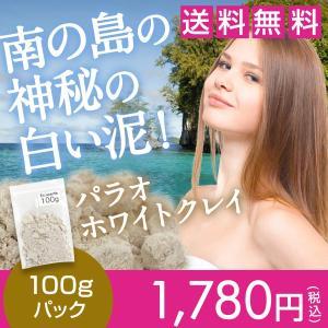 送料無料 パラオホワイトクレイパック原材料 パラオ白泥100g☆44s01|ecoearth