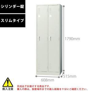 【LKシリーズ】 2人用ロッカー(スリムタイプ/シリンダー錠) LK-22S W608×D515×H1790mm|ecofit