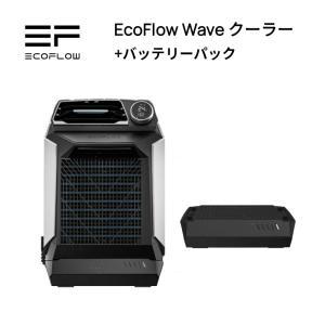 三点セット ポータブル電源 EFDELTA+160W ソーラーパネル 2枚セット 大容量 非常用電源...