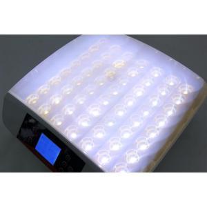 最大56個 全自動孵卵器 孵卵機 孵化器 ふ卵器 孵化器 インキュベーター|ecofuture